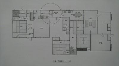 DSC_6710.JPG